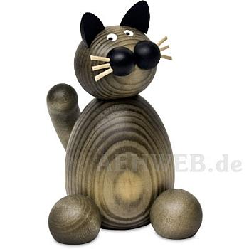 Katze Karli groß