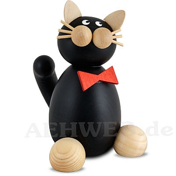 Katze Kurt groß