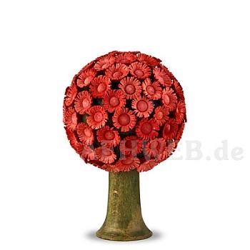 Blütenbaum rot