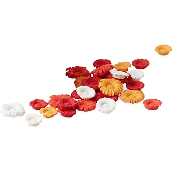 Blüten weiß, orange und rot farbig sortiert