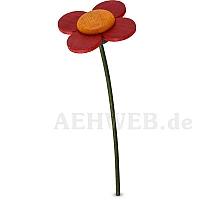 Blume rot