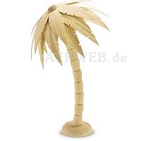 Palme natur