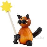 Katze Bommel mit Stern